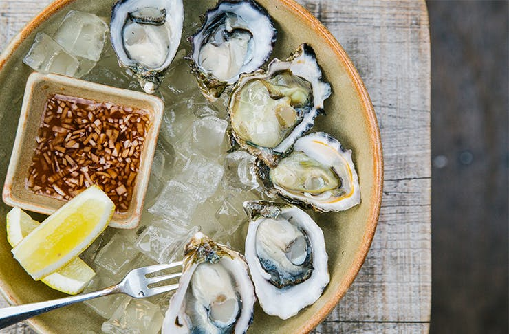 Best Oysters Perth