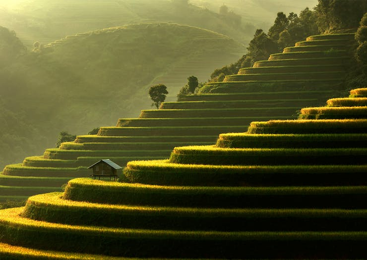 Feast Your Eyes On 5 Of The Most 'Gram Worthy Spots In Vietnam