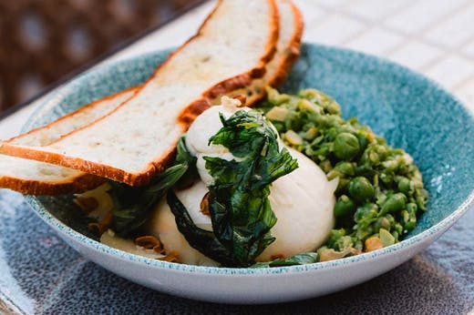 The Fix | Everywhere To Eat In Lane Cove