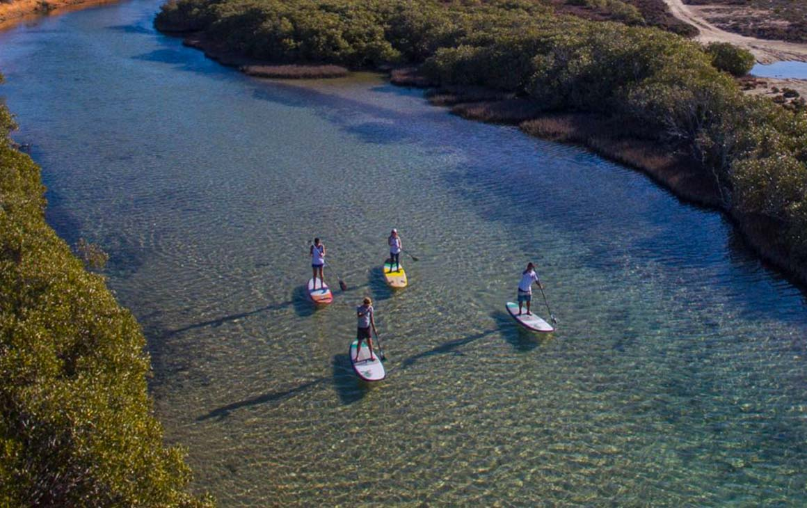 a group of people stand up paddle board in beautiful blue water
