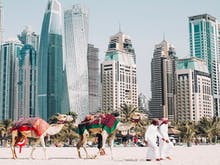 Pack Your Bags, Here's Everything You Need To See, Eat And Do In Dubai