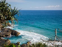 Everything You Need To Know About Gold Coast Green Week
