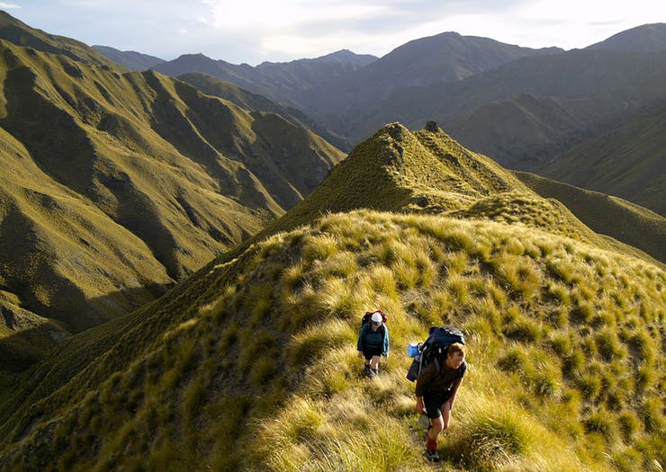 15 Bucket List New Zealand Experiences You Need to Check Off