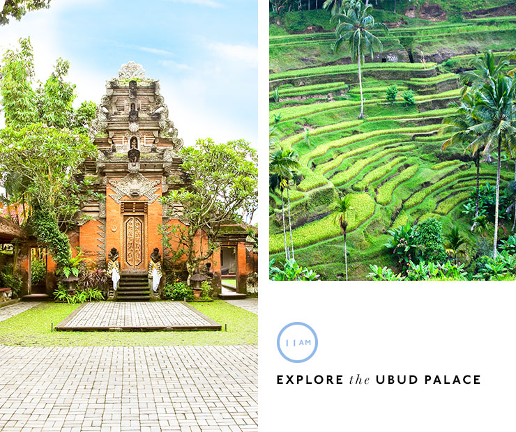 48 Hours In Ubud