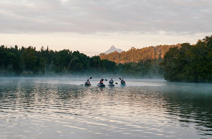 group of people kayaking on misty river
