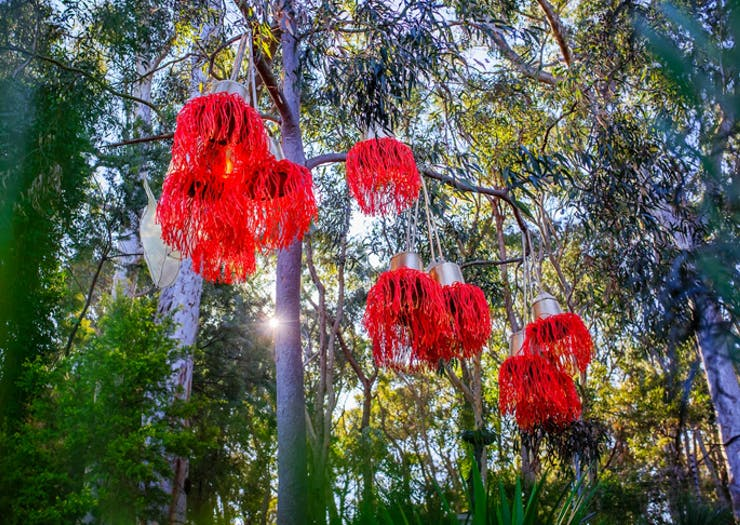 Green Up Your Digs With These 8 Sydney Nurseries Worth Your Weekend Wandering