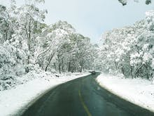 8 Beautiful Snow Destinations In Australia To Plan Your Winter Getaway To This Year