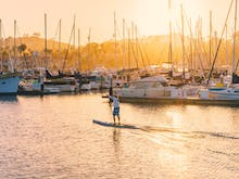 12 Of The Most Insane Places Stand Up Paddle Board In Sydney