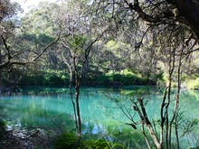 Hop In The Car, This Enchanted Blue Pool Bushwalk Is Just 2 Hours From Sydney