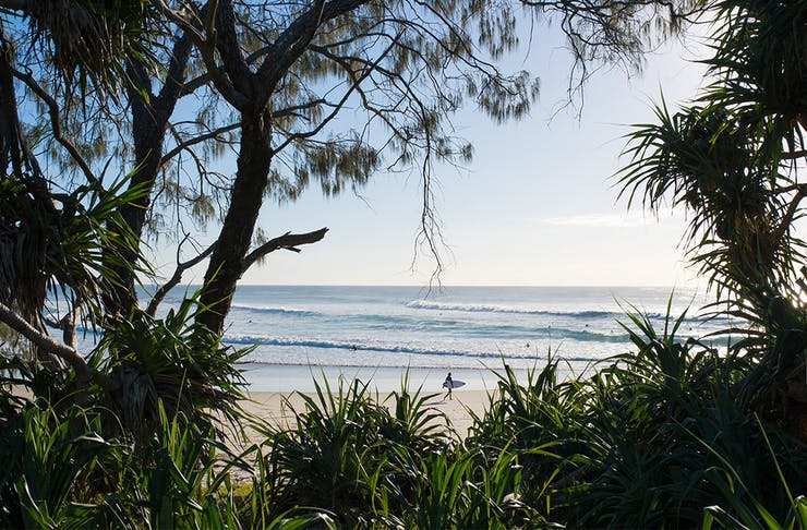 clusters of trees frame an image of a white sand beach. A person walks in the distance.