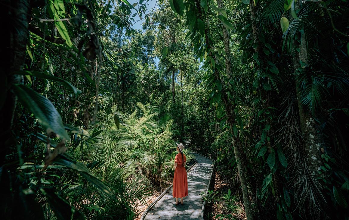 a woman, in an orange dress, walks along a broad walk in a rainforest.