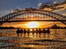 Hit The Harbour And Make A Difference With Sydney's New Clean-Up Kayak Tours