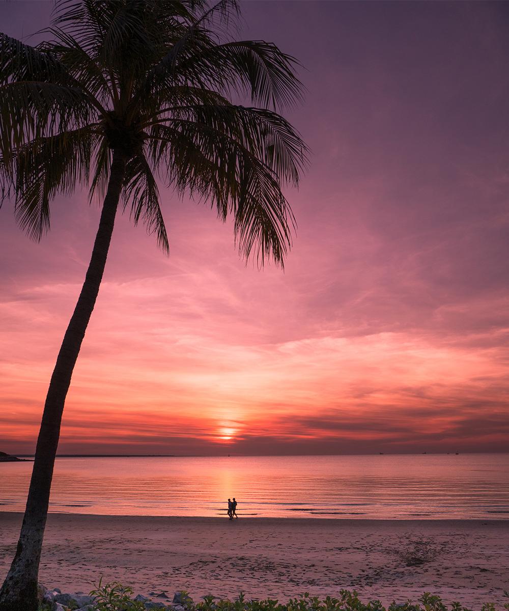a stunning pink sunset in Darwin across the beach.