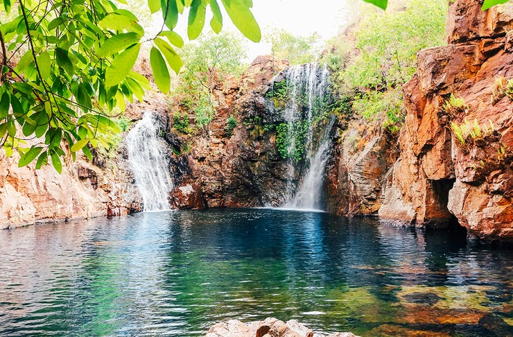 Lush greenery surrounds the stunning clear waters of Florence Falls