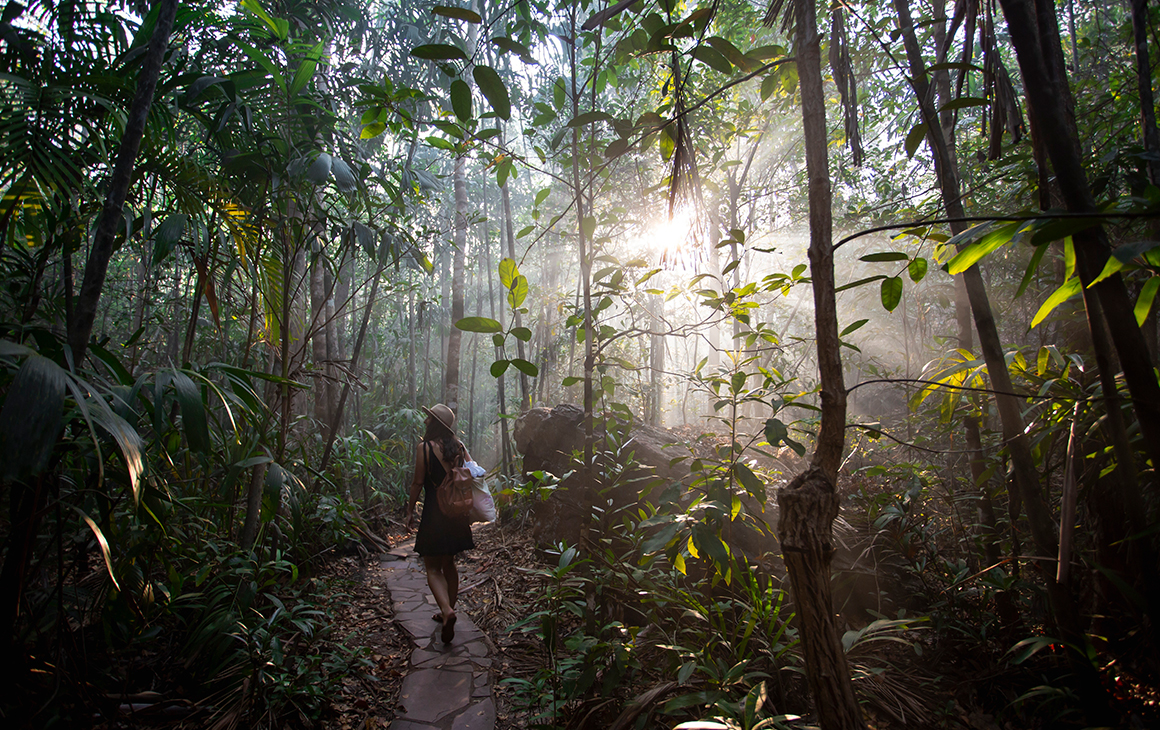 A person walls through the lush woodlands of Litchfield National Park
