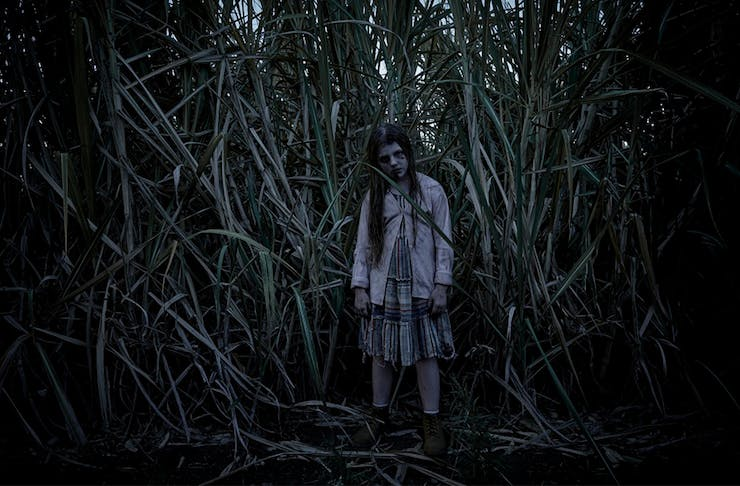 a young girl stands in the middle of a field