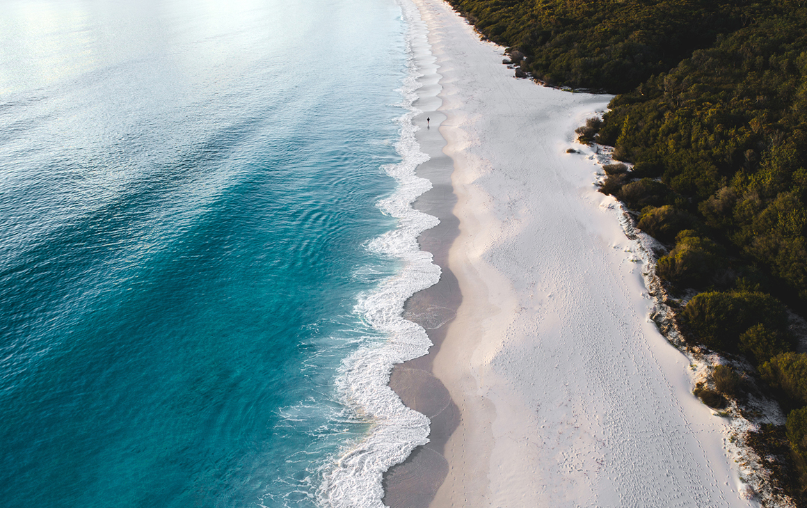 the white sand meets lush greenery in Jervis Bay