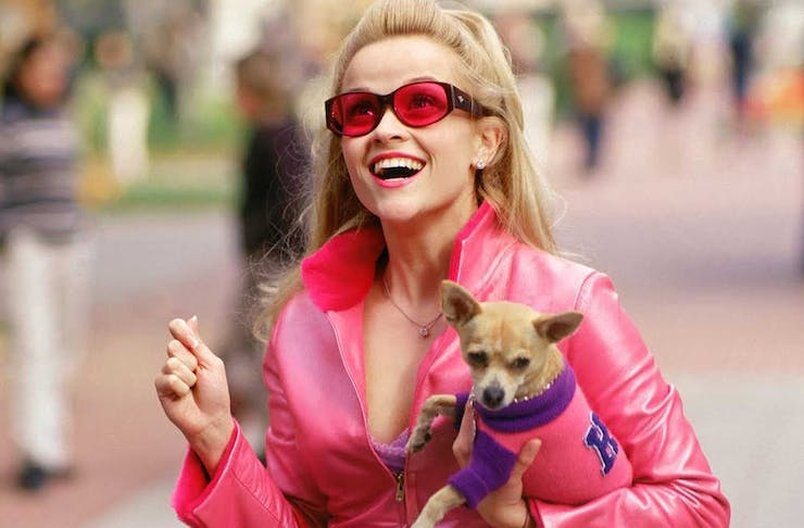Legally Blonde star Elle Woods wears a matching pink jacket and sunglasses, holding a tiny dog.