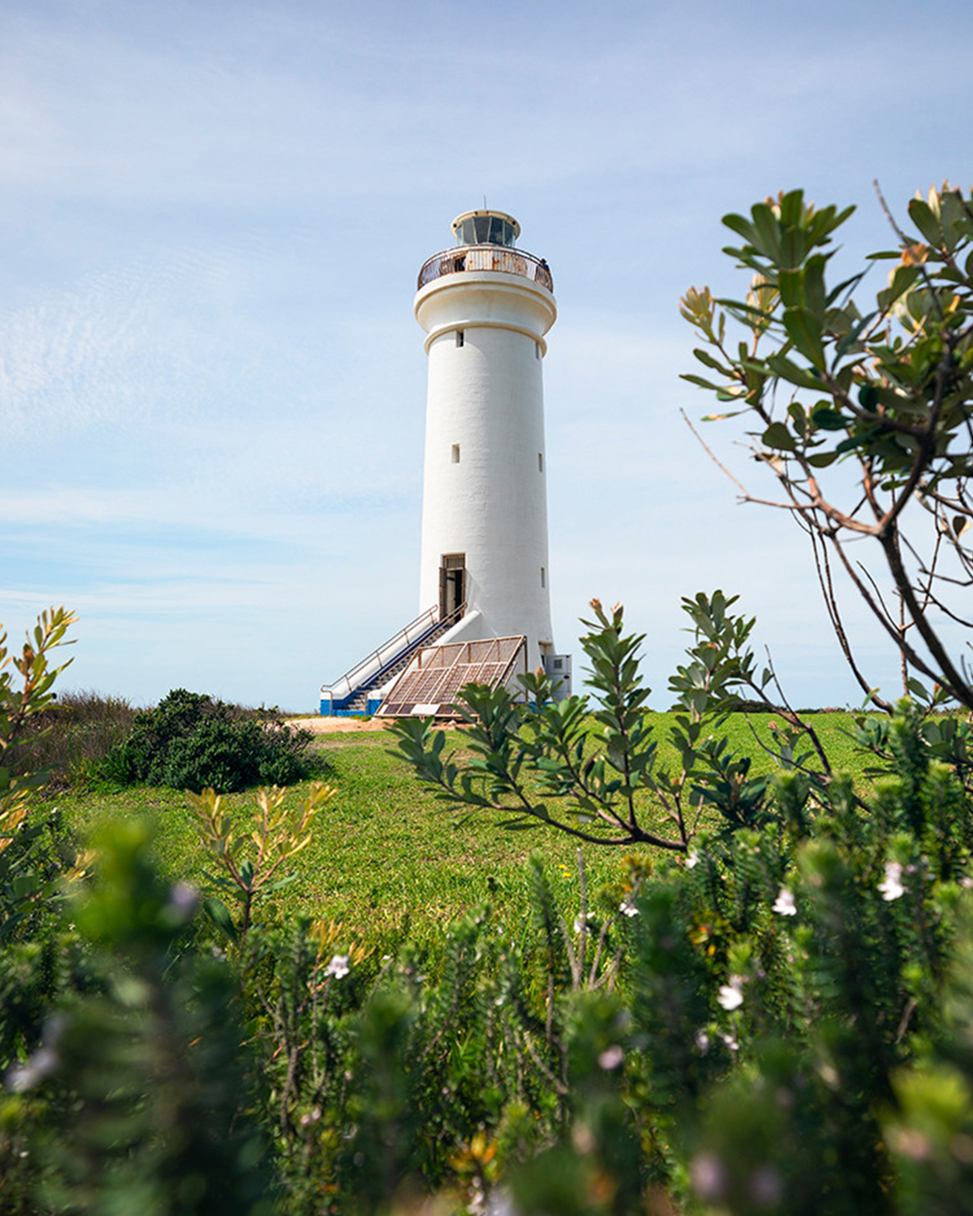 bush view of fingal island's port stephens lighthouse