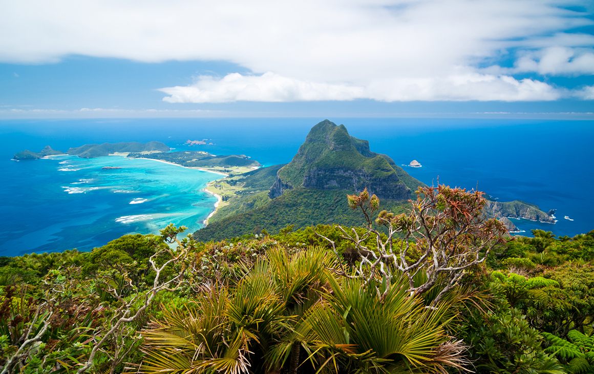 through a lush, green rainforest, is the tip of Lord Howe Island. Surrounded by azure waters.