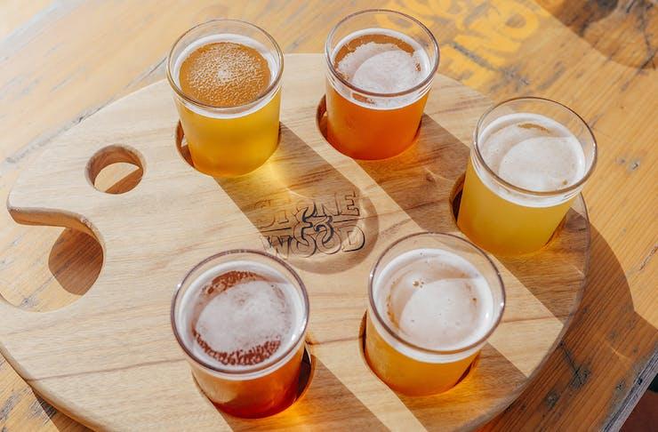 Miami Marketta Beer Festival