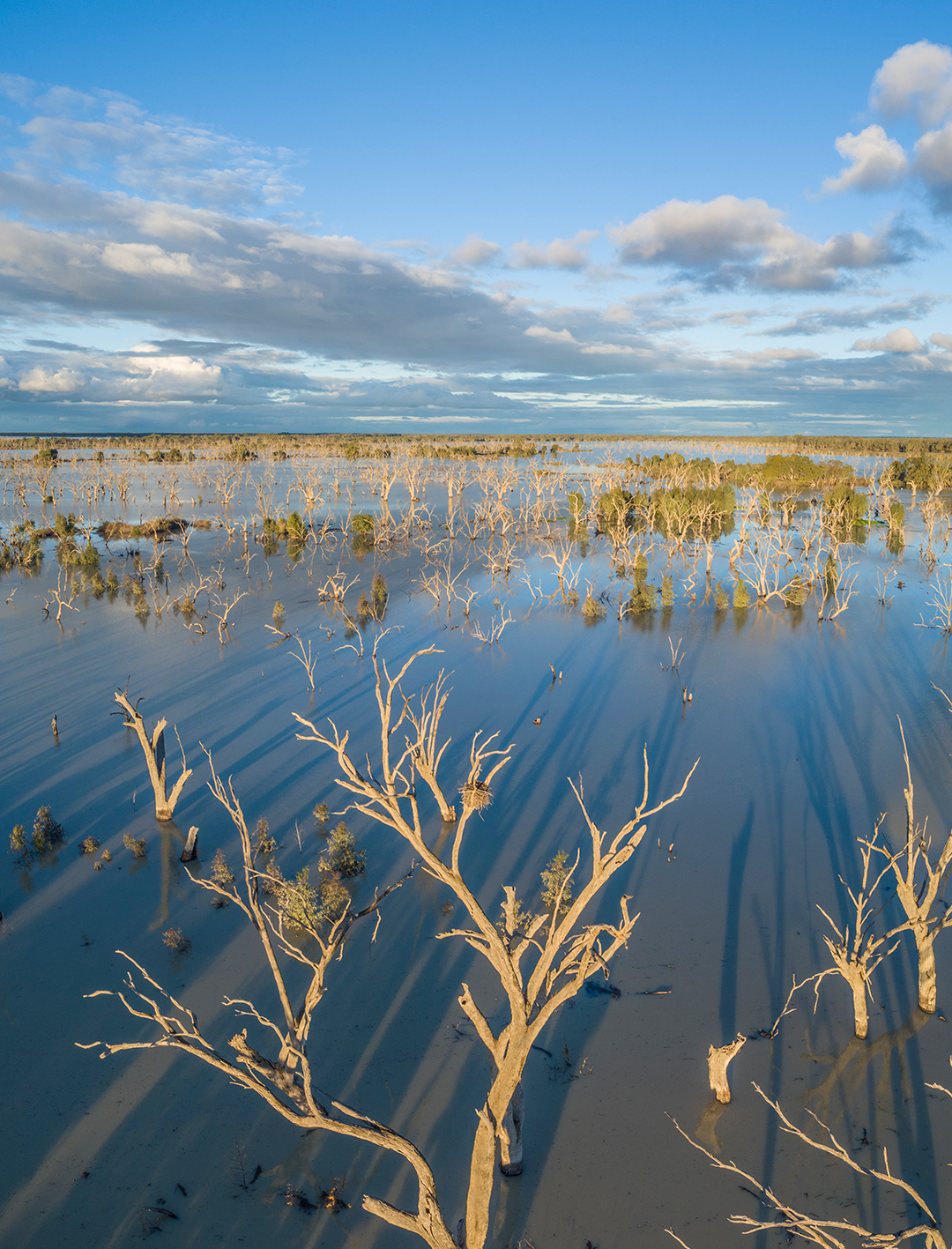 menindee lakes during the day