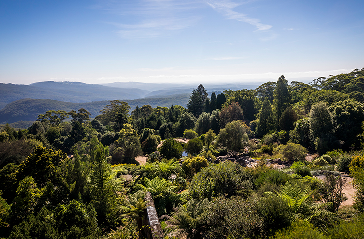 mount tomah view in the blue mountains