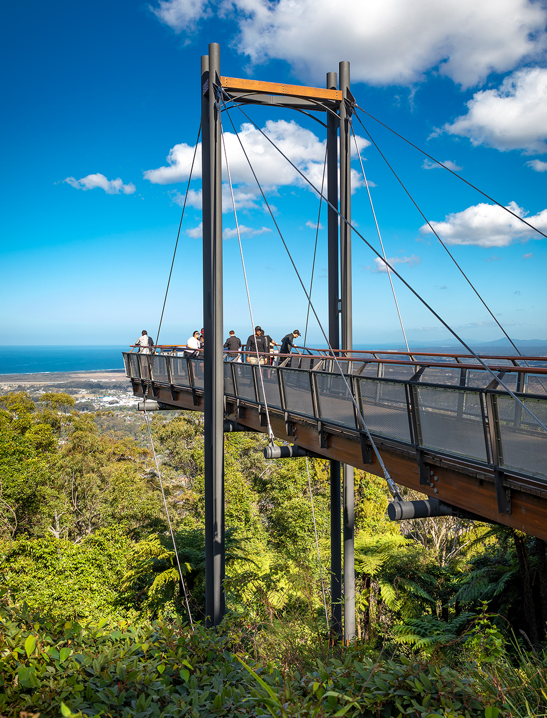skywalk lookout at orara state forest