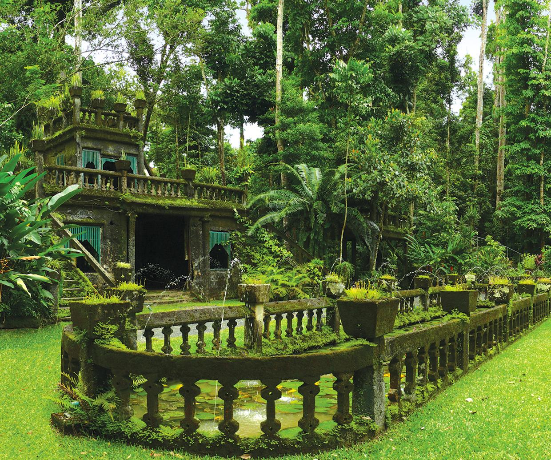 rainforest castle