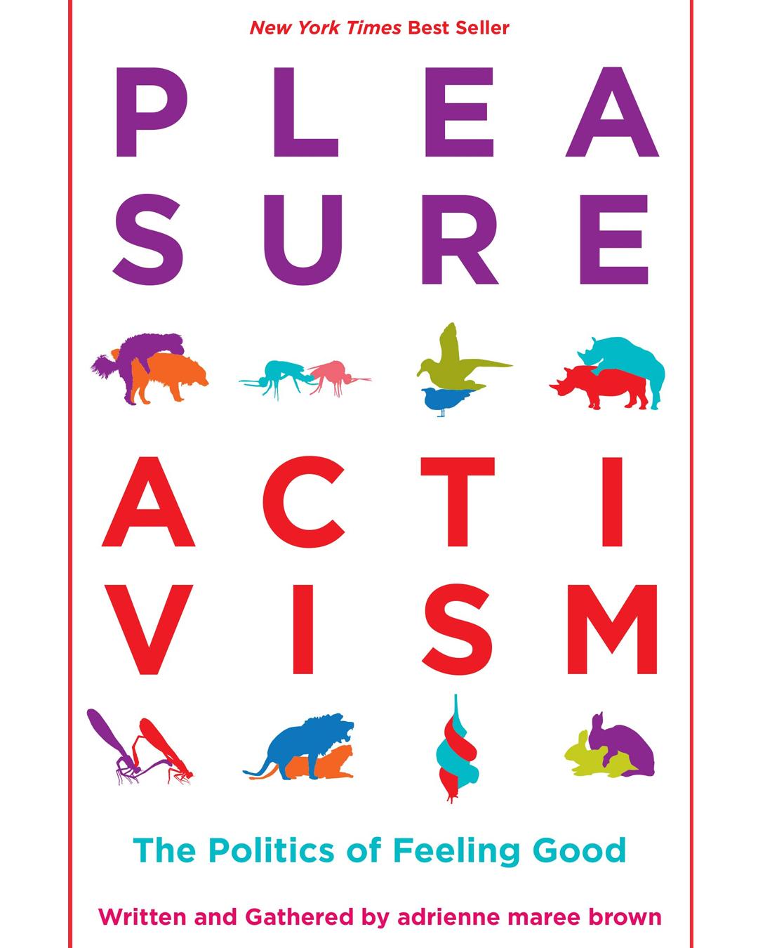 pleasure activism front cover