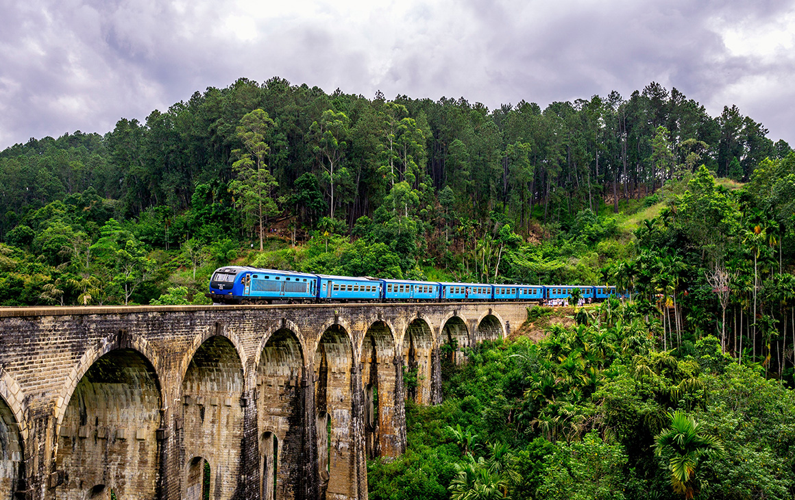 a blue train travels on a towering railway bridge in a forest.