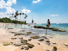 Scope Out The First-Timer's Guide To Sri Lanka