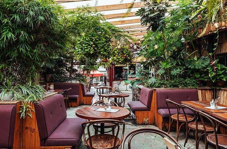sydneys-best-beer-gardens