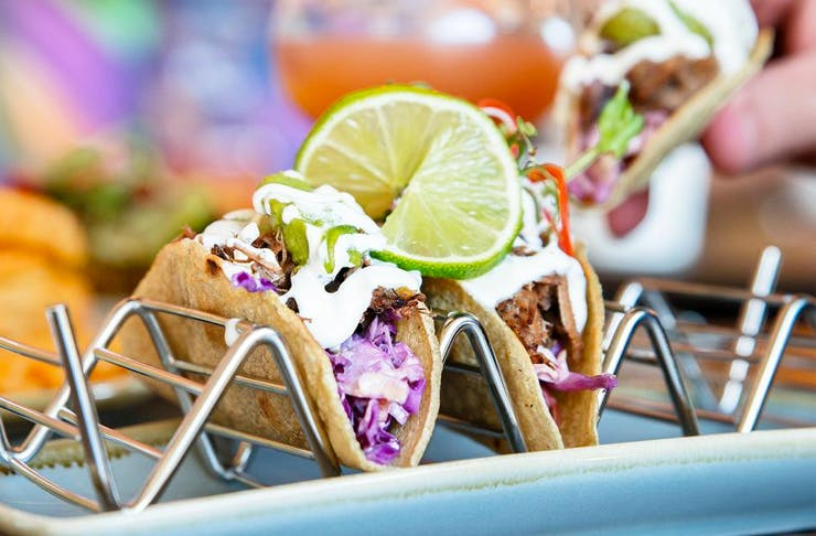taco-tequila-festival-sydney