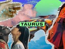 Your Taurus Horoscope For November