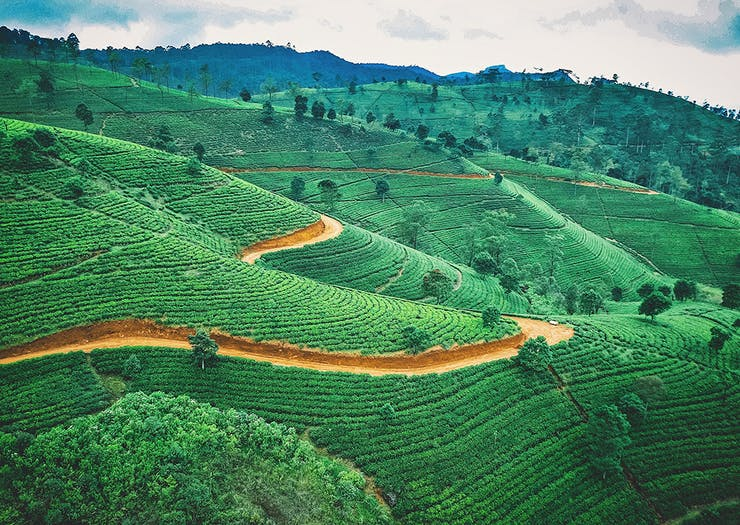 Cameras At The Ready, Here Are 10 Of The Most 'Grammable Spots In Sri Lanka