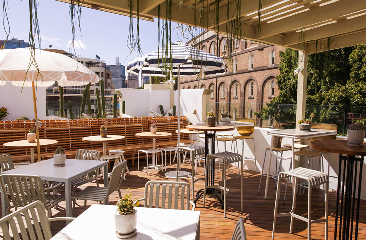 rooftop dining with vines and umbrellas at the rooftop at quarryman's hotel in sydney