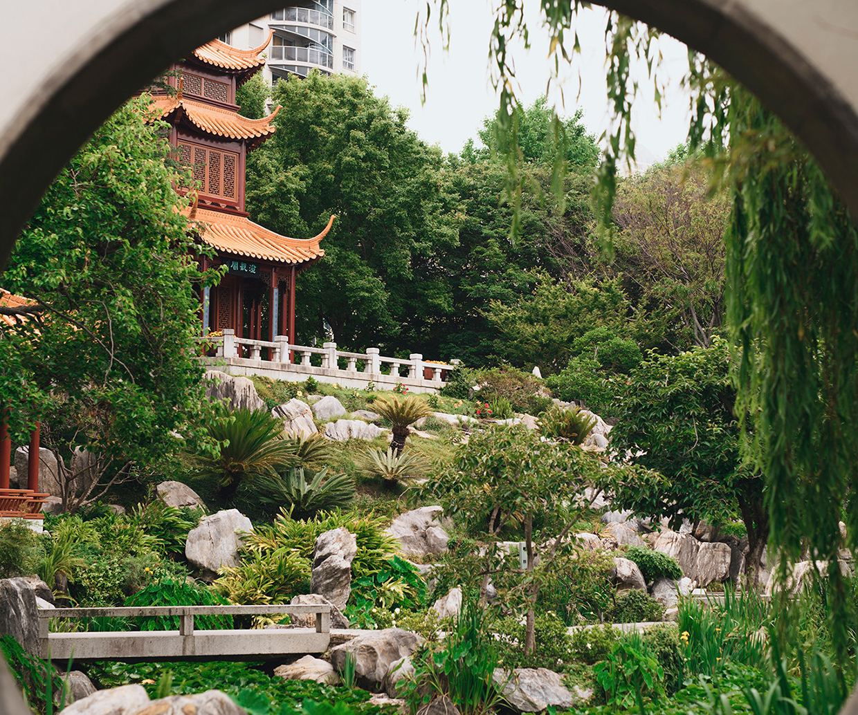 chinese garden in the city