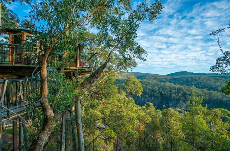 treehouse airbnb among bilpin trees in blue mountains