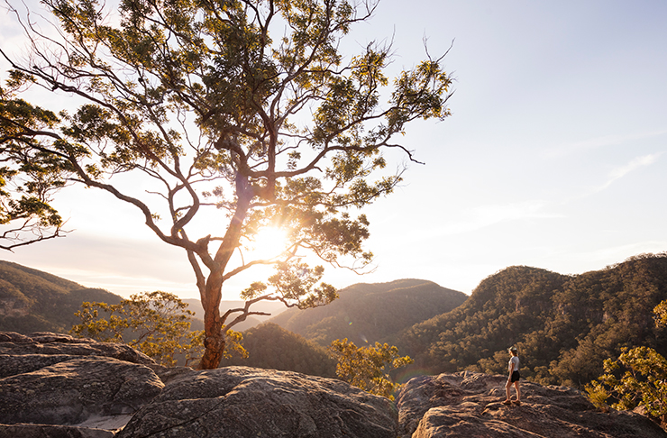 vale of avoca lookout at sunset