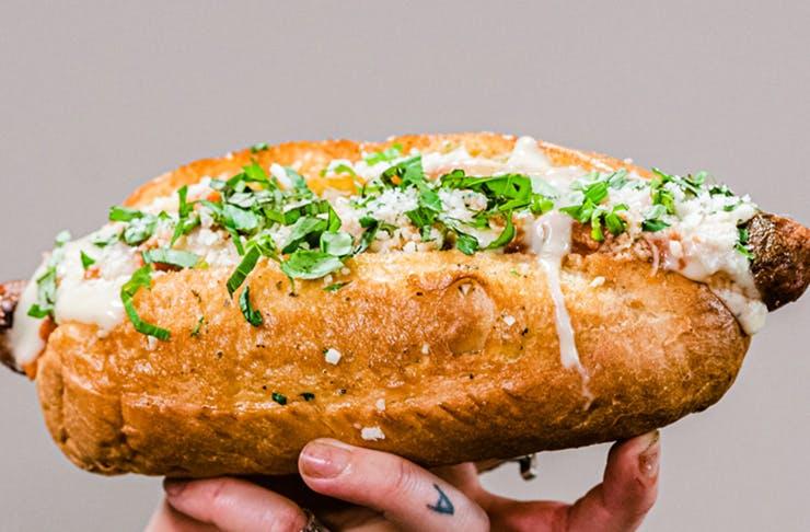 vegan-lasagne-dog