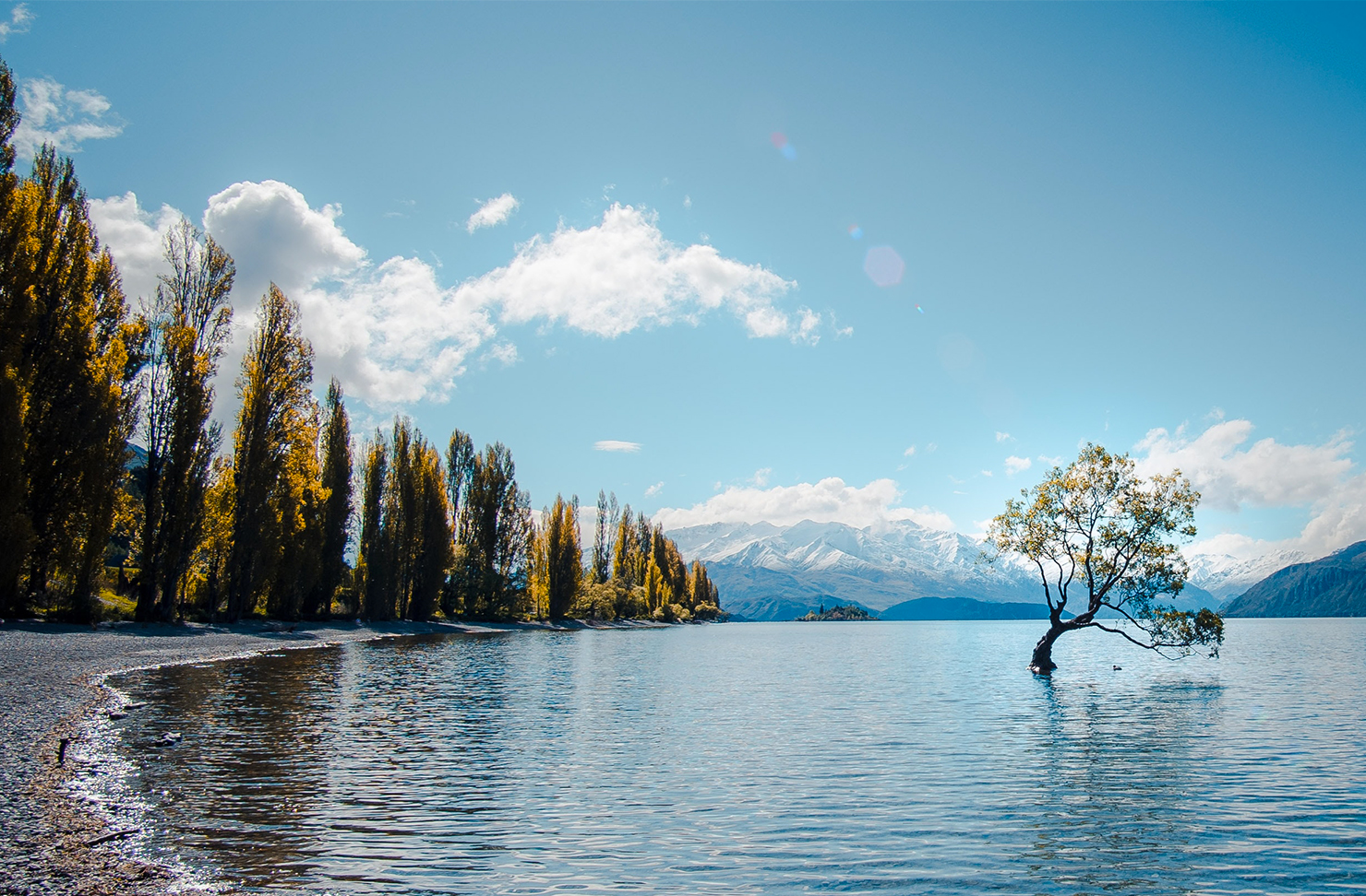 the wanaka late, fringed by trees has a blue sky in the background.