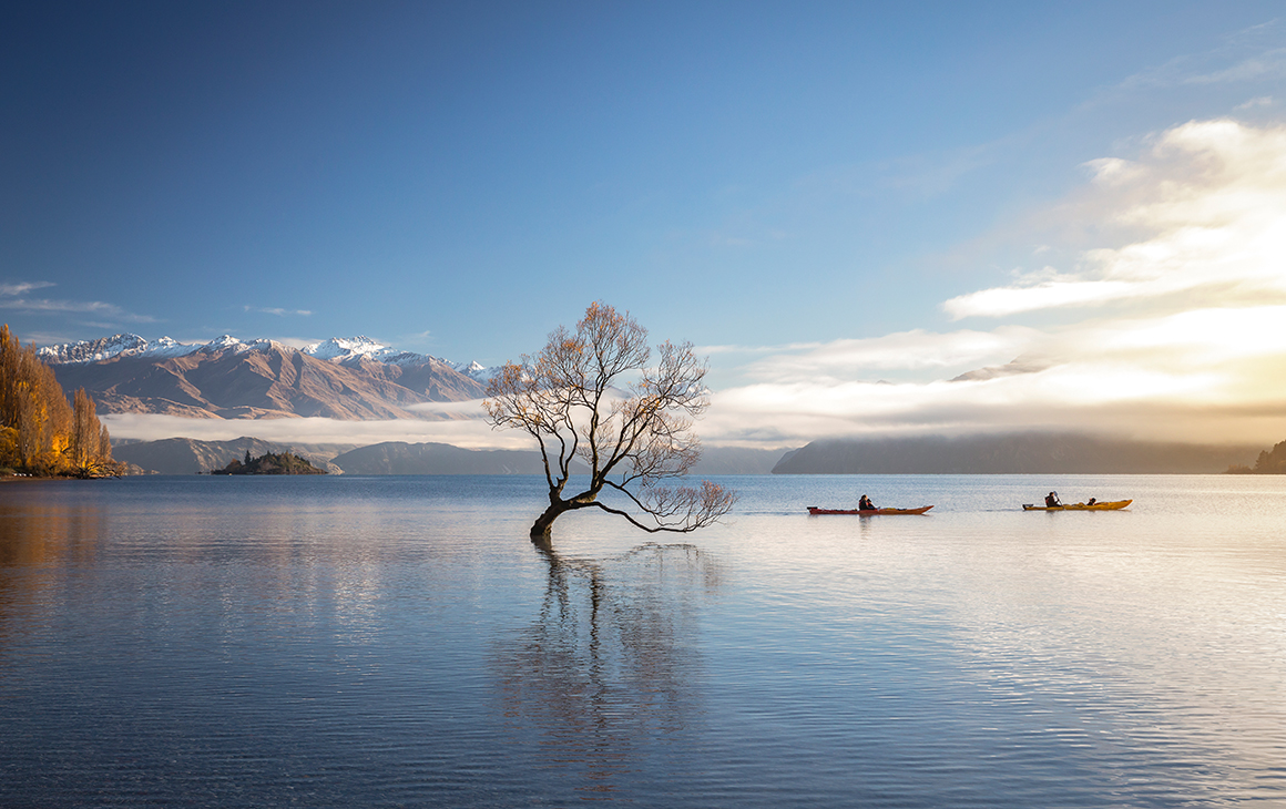 a tree in the middle of stunning lake wanaka. In the background a couple kayaks over the still lake.
