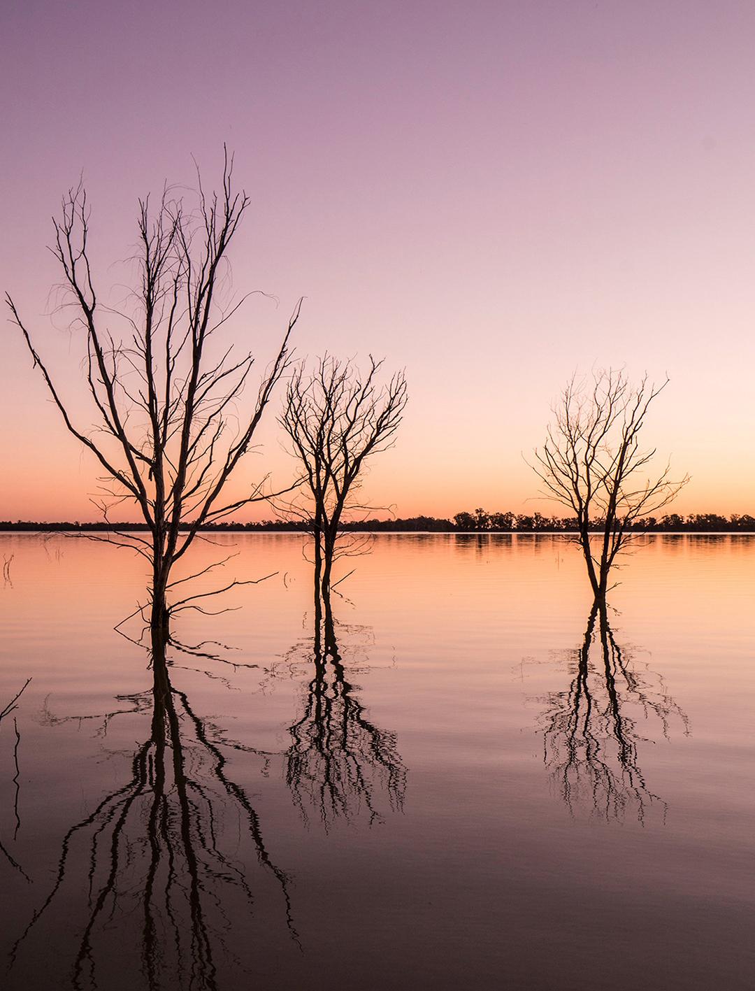 yanga lake at sunset